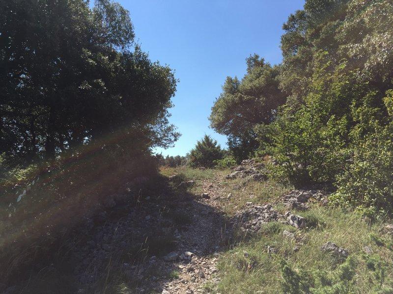 Castelliere di Monte Cerchio - Massa Martana