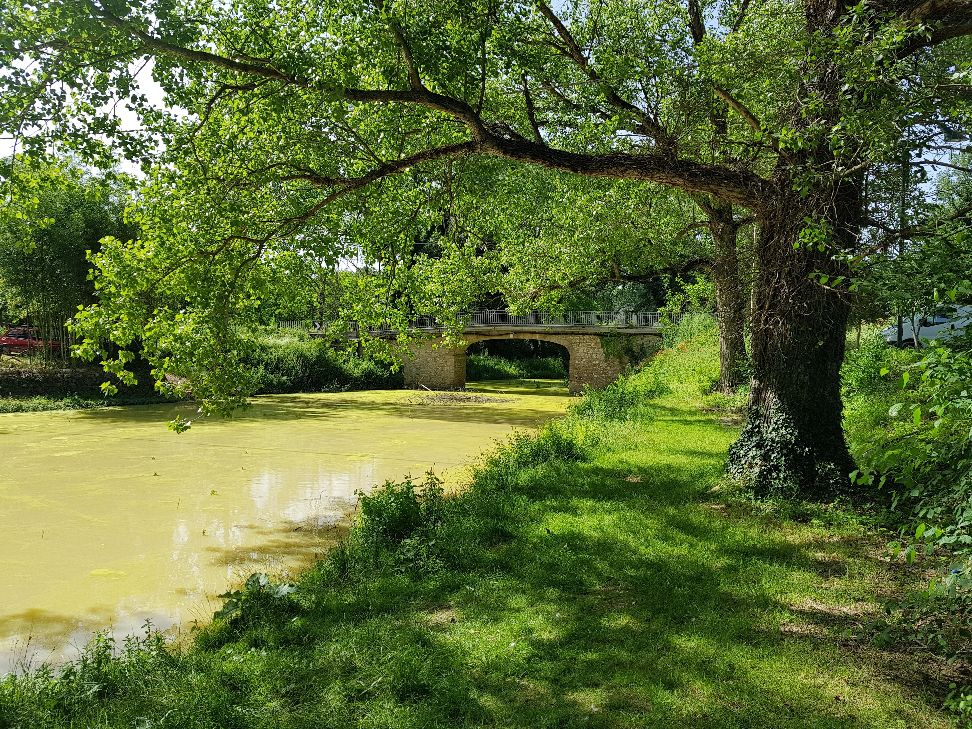Parco Fluviale Rio Grande